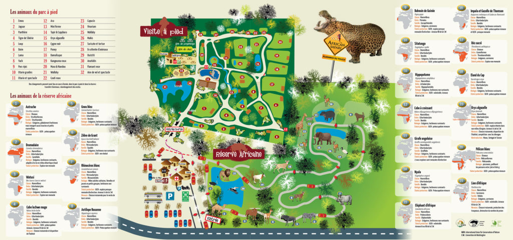 Plan African Safari