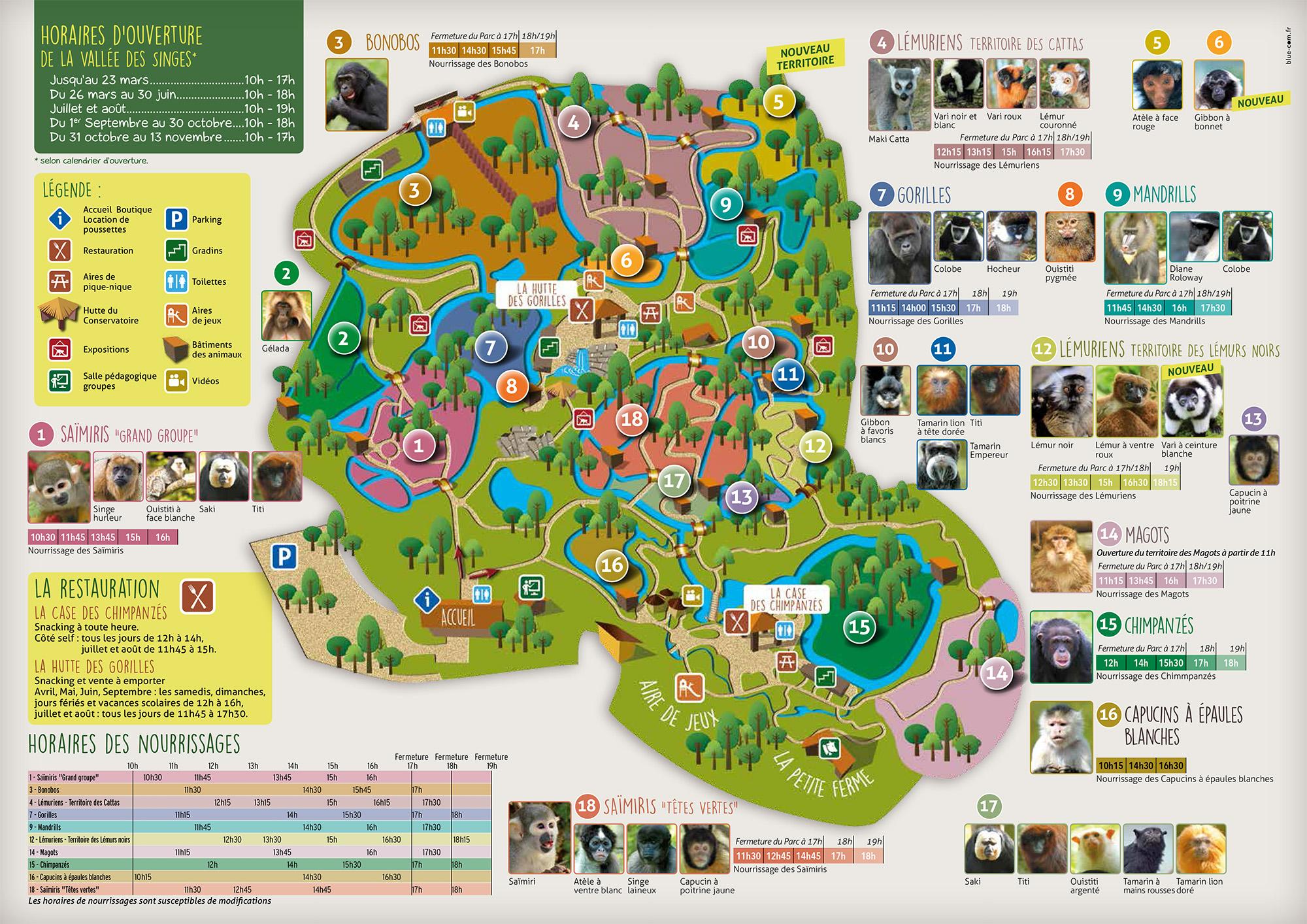 Vallée des Singes - guide pratique et tarifs 2020